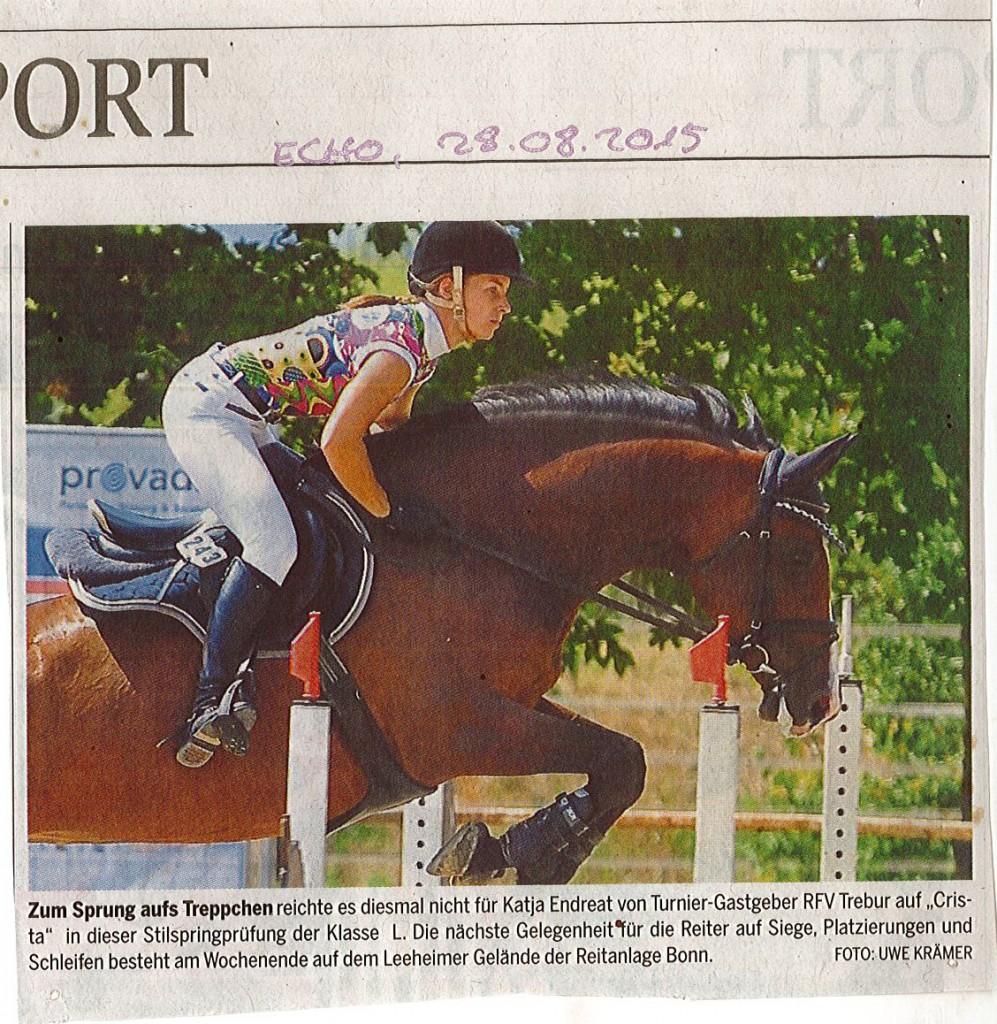 Zeitungsbericht Echo 28.08.2015