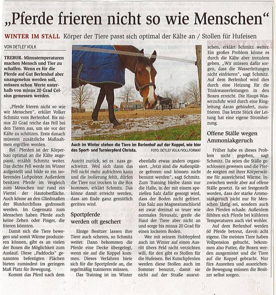 Pferde_frieren_nicht